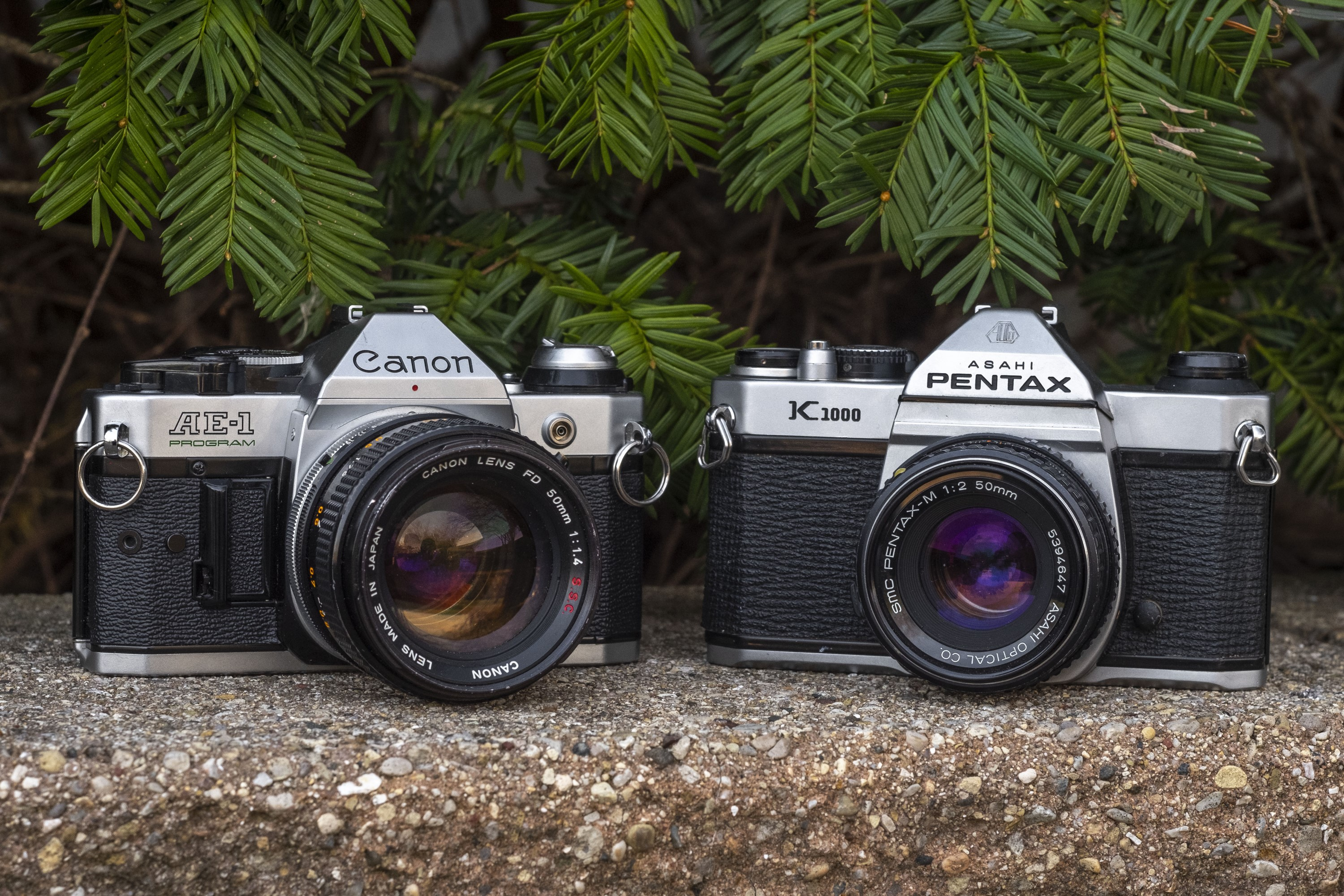 Student Camera Showdown: Canon AE-1 Program vs Pentax K1000